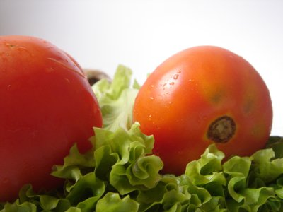 solata (zelenjava)