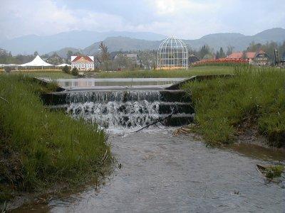 Hujšanje z bioenergijo
