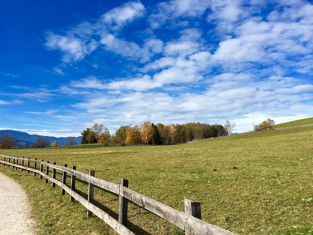 Bioresonanca – moja zvesta spremljevalka